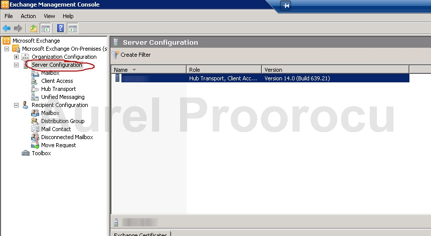 How to check if standard or enterprise Exchange 2010 is installed